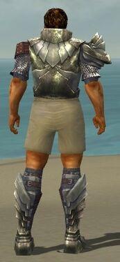 Warrior Templar Armor M gray chest feet back.jpg