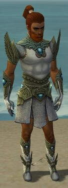 Paragon Monument Armor M gray front.jpg