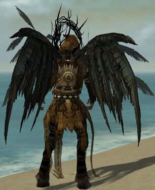 Raiment of the Lich M dyed back.jpg