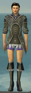 Elementalist Canthan Armor M gray chest feet front.jpg
