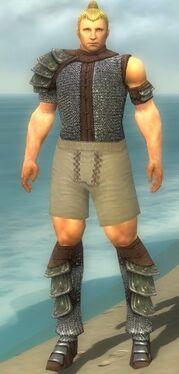 Warrior Krytan Armor M gray chest feet front.jpg