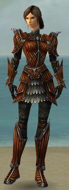 Warrior Wyvern Armor F nohelmet.jpg
