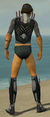 Assassin Elite Canthan Armor M gray chest feet back.jpg