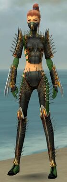 Assassin Exotic Armor F dyed front.jpg