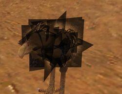 Black Moa Chick glitch 2.jpg