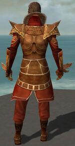 General Morgahn Starter Armor Back.jpg