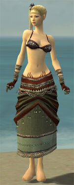 Ritualist Exotic Armor F gray arms legs front.jpg
