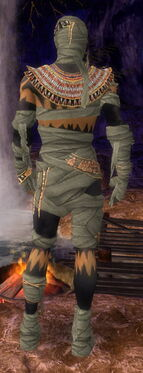 Ritualist Ancient Armor M gray back.jpg