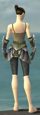 Warrior Templar Armor F gray arms legs back.jpg
