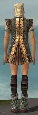 Elementalist Istani Armor M gray chest feet back.jpg