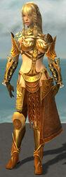 Jora Armor Norn Front.jpg