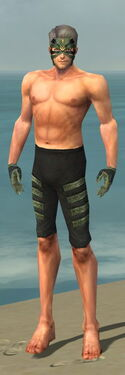 Mesmer Elite Kurzick Armor M gray arms legs front.jpg
