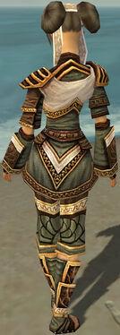 Monk Elite Canthan Armor F gray back.jpg