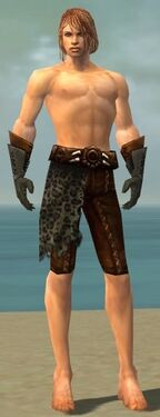 Ranger Istani Armor M gray arms legs front.jpg