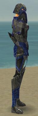 Warrior Elite Platemail Armor F dyed side.jpg