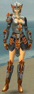 Warrior Elite Templar Armor F dyed front.jpg