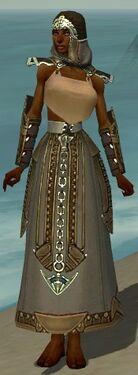 Dervish Asuran Armor F gray arms legs front.jpg