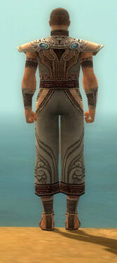 Monk Asuran Armor M gray back.jpg