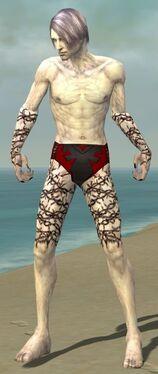 Necromancer Elite Scar Pattern Armor M gray arms legs front.jpg