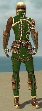 Ranger Shing Jea Armor M dyed front.jpg