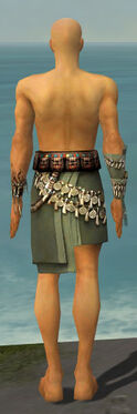 Ritualist Canthan Armor M gray arms legs back.jpg