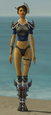 Assassin Norn Armor F gray chest feet front.jpg