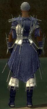 Elementalist Primeval Armor M dyed back.jpg