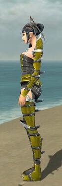 Necromancer Profane Armor F dyed side.jpg