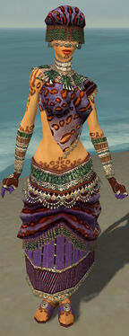Ritualist Elite Exotic Armor F dyed front.jpg
