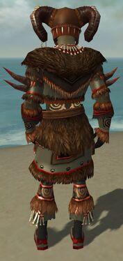Ritualist Norn Armor M gray back.jpg