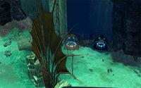 The Deep (Location).jpg