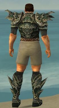 Warrior Elite Luxon Armor M gray chest feet back.jpg
