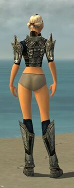Warrior Elite Sunspear Armor F gray chest feet back.jpg