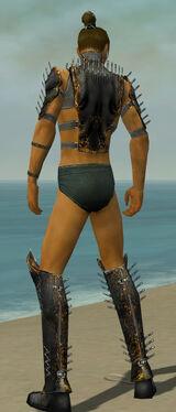 Assassin Exotic Armor M gray chest feet back.jpg