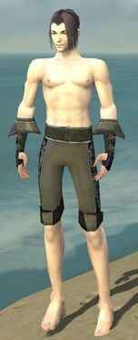 Elementalist Elite Kurzick Armor M gray arms legs front.jpg