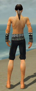 Elementalist Elite Luxon Armor M gray arms legs back.jpg