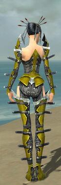 Necromancer Profane Armor F dyed back.jpg