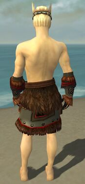Ritualist Norn Armor M gray arms legs back.jpg