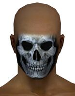 Skeleton Face Paint gray front.jpg
