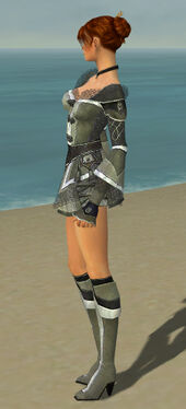 Elementalist Kurzick Armor F gray side.jpg