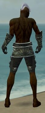 Necromancer Fanatic Armor M gray arms legs back.jpg