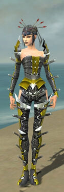 Necromancer Profane Armor F dyed front.jpg