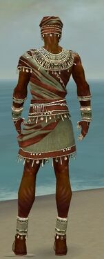 Ritualist Exotic Armor M gray back.jpg