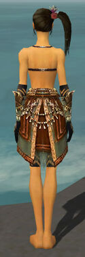 Ritualist Imperial Armor F gray arms legs back.jpg