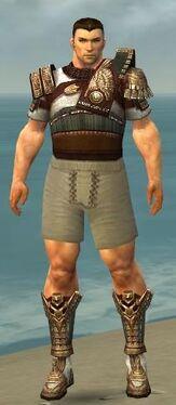 Warrior Vabbian Armor M gray chest feet front.jpg