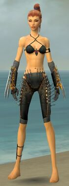 Assassin Exotic Armor F gray arms legs front.jpg