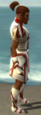 Paragon Asuran Armor M dyed side.jpg
