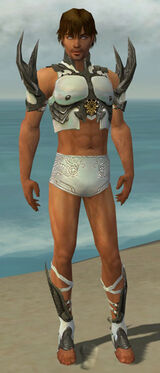 Paragon Elite Sunspear Armor M gray chest feet front.jpg