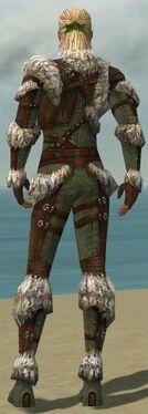 Ranger Elite Fur-Lined Armor M gray back.jpg