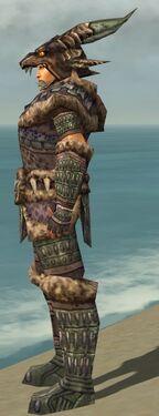 Warrior Charr Hide Armor M gray side alternate.jpg